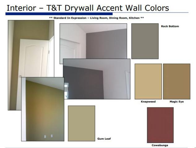 Smart upgrades to make when buying a new manufactured home - (drywall accent wall colors available on new manufactured homes)
