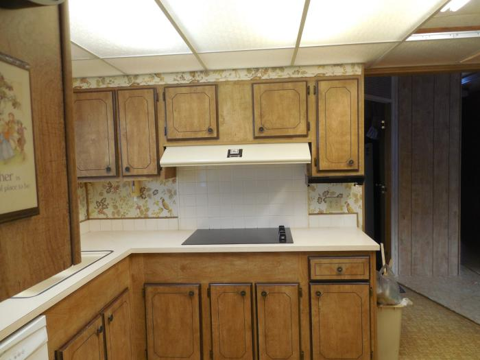 mobile home makeover - Kitchen Before