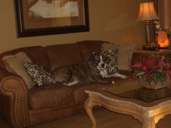 Extreme manufactured home remodel living room 2