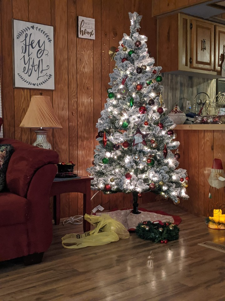 Denise Salyer Christmas Decor In Manufactured Homes