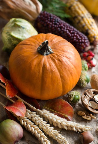 10 Fall Decorating Ideas you Can Actually Afford (no $150 wreaths here!)