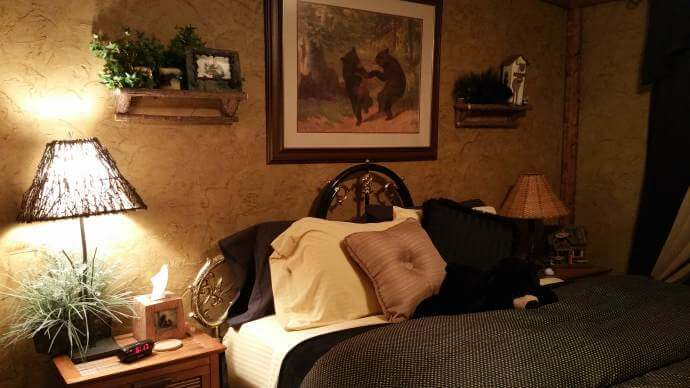 Rustic Cabin Manufactured Home Remodel - Bedroom Makeover 2
