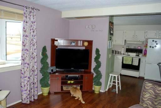 Living room in single wide