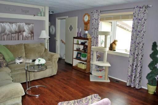 1978 Fleetwood Single Wide Living room