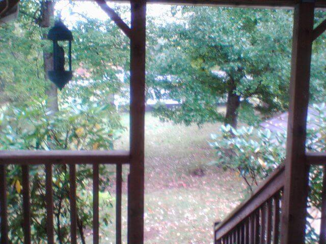 Mobile Home Living headquarters - backyard 2