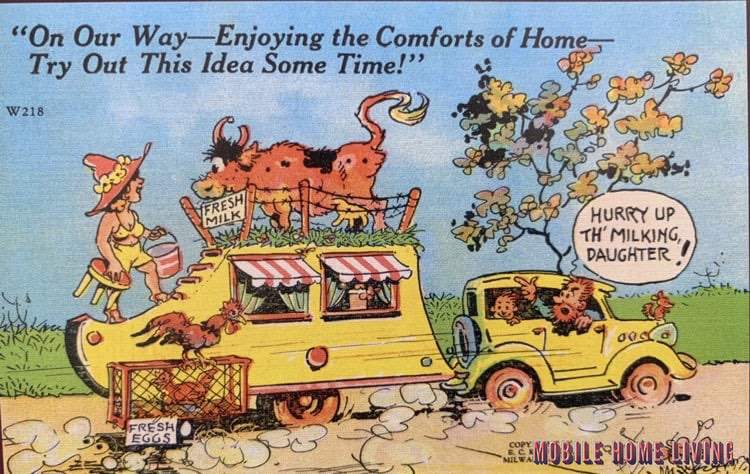 Cow On Trailer Roof Postcard 2
