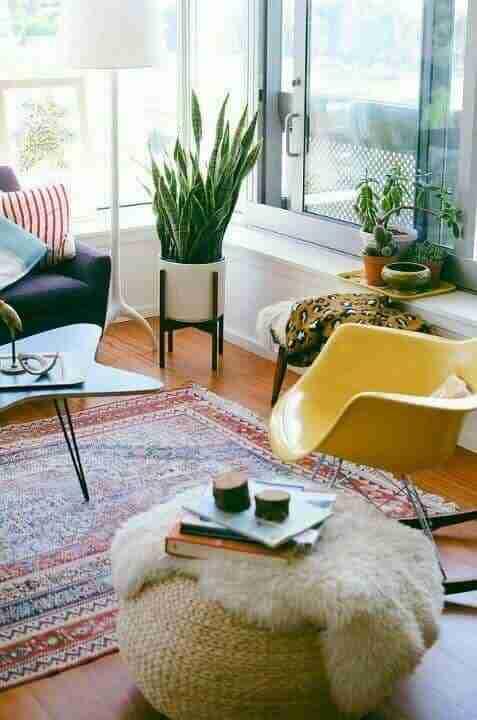 Decorating With Indoor Plants