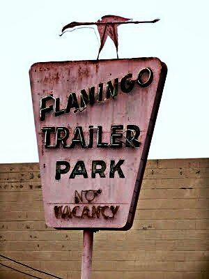 Flamingo trailer park 1