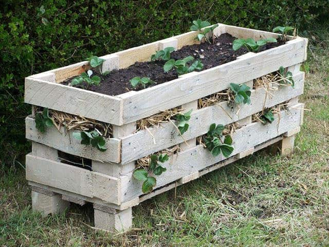 strawberry planter made from pallets