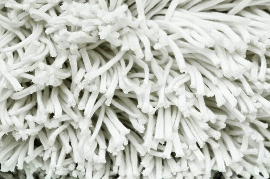 Close up of white shag rug material