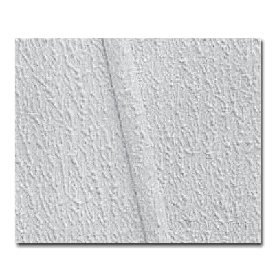 Mobile Home Ceilings Guide: Gypsum Ceiling Panel Replacements 3