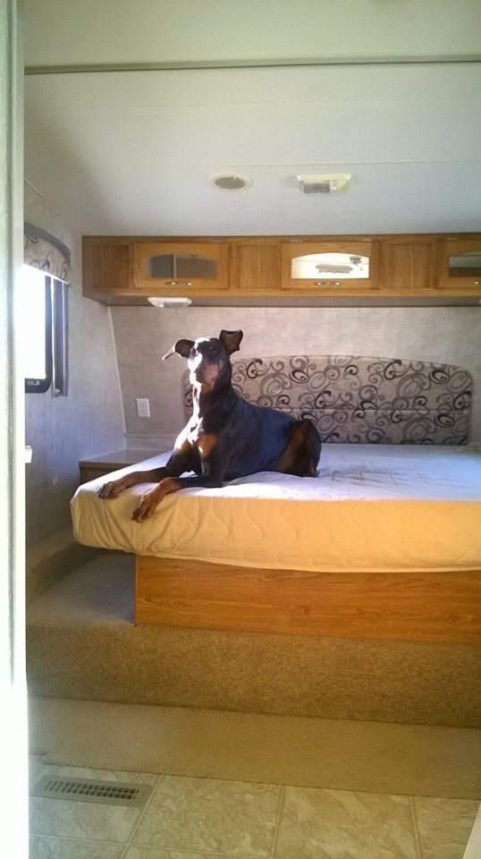 5th wheel camper makeover - bedroom before