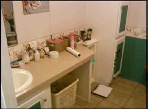 Amazing 2007 Fleetwood manufactured home makeover (master bathroom before)