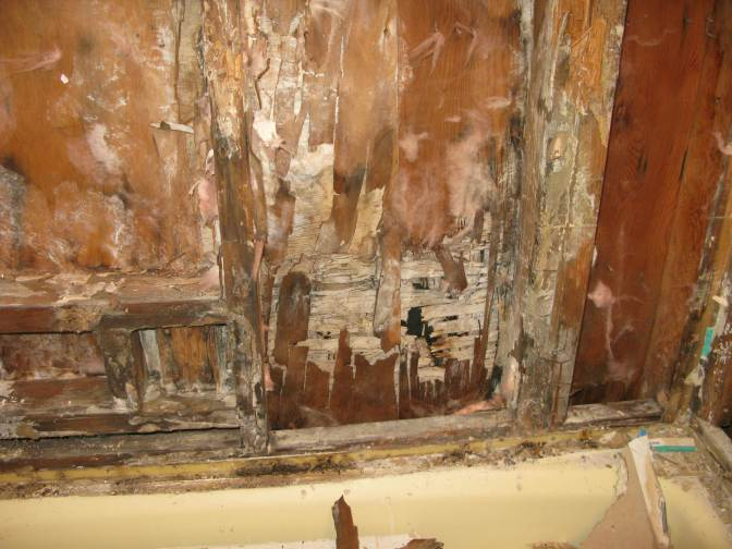 Bathroom 1 - What 10 years of water seepage can do to your home
