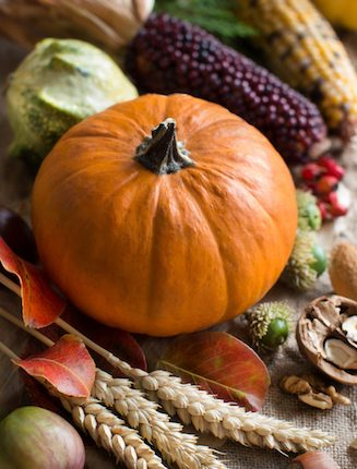 Fall Decorating Ideas you can Actually Afford- pumpkins, corn, acorns.