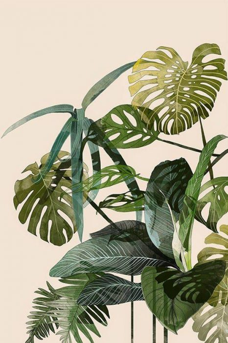 Free Palm Illustration Printable