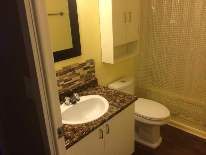 Great Remodeled Single Wide for sale -bathroom after