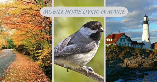 Buying a mobile home in maine