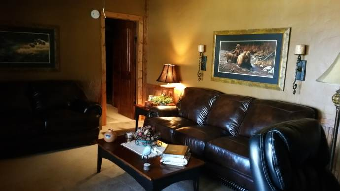 Manufactured Home Rustic Cabin Makeover - Living Room