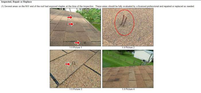 Roof Inspection Report Template  Best Roof