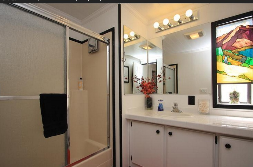 Sensational Single wide decor (bathroom 2)