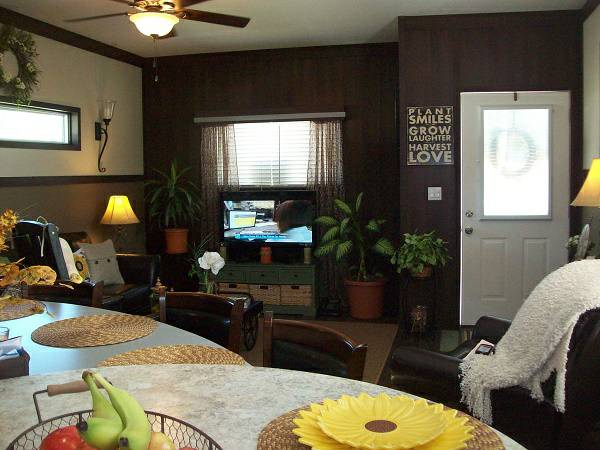 Stylish Single Wide Manufactured Home Interiors - Decorating inspiration - 2013 Giles - Living Room