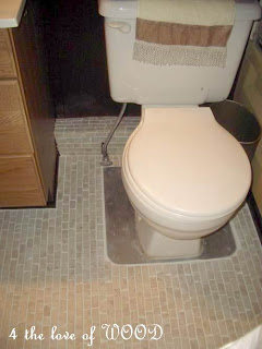 amazing mobile home tips-toilet