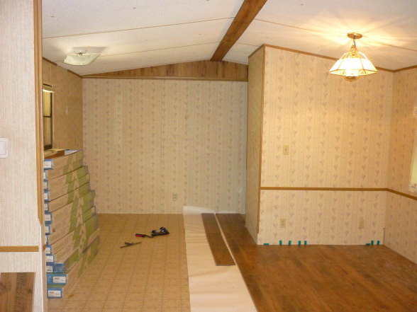 modern single wide mobile home update-before