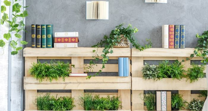 Modern bookshelf made of wooden pallets with green plants on it