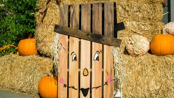 pallet project ideas-fall
