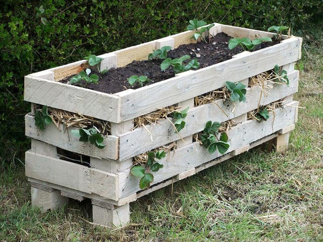 Pallet projects-strawberry planter