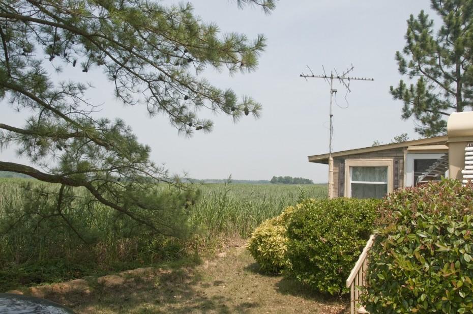 property bordering Delaware wetlands