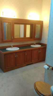remodeling the master bathroom -dated before look