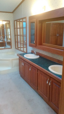 remodeling the master bathroom -vanity