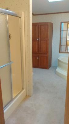 remodeling the master bathroom -vinyl walls and carpet