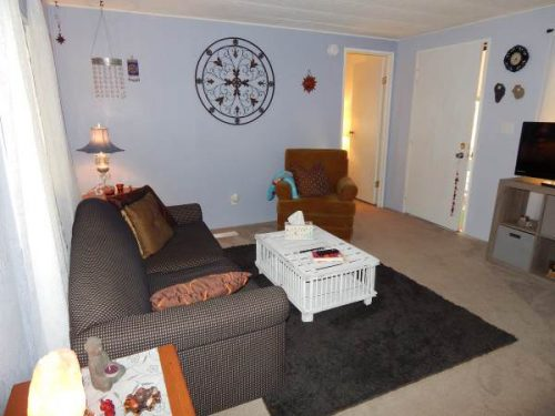 Top finds in mobile homes- desert beauty interior